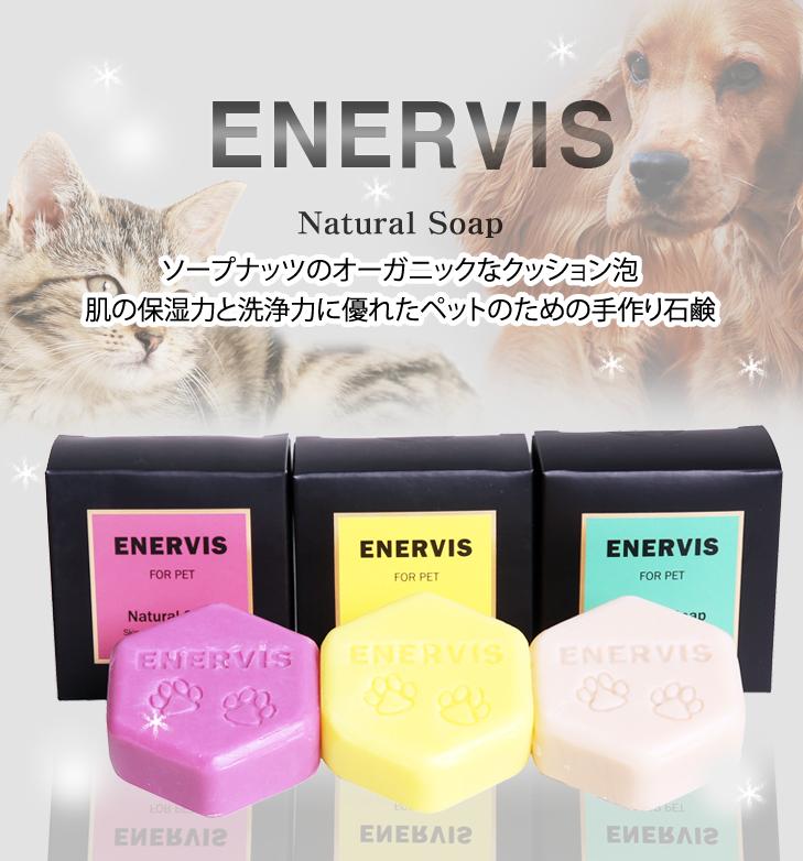 enervis01
