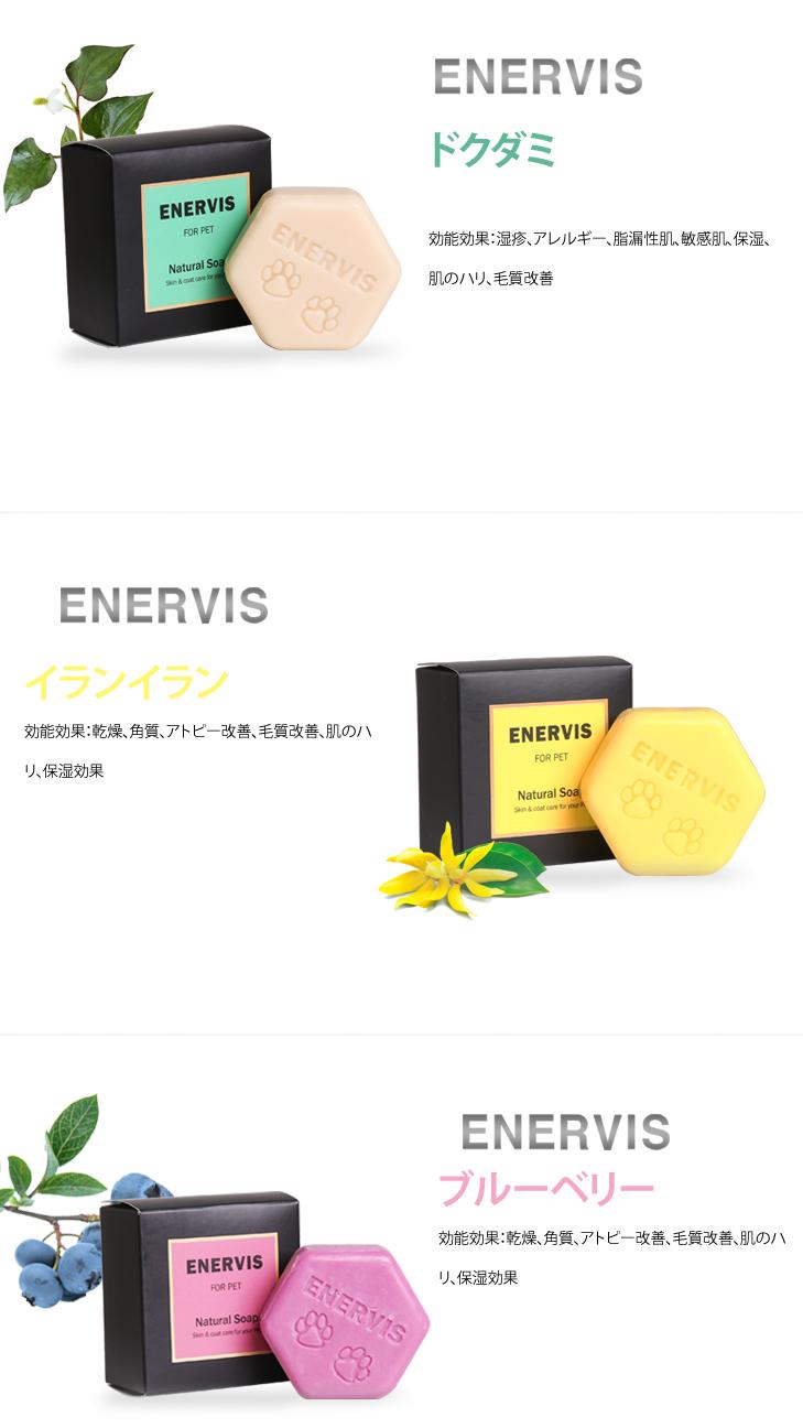 enervis02